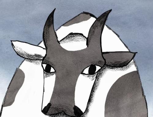 Státní fond kinematografie podpořil vývoj krátkého filmu O krávě